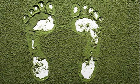 What Is Your Greatest Footprint? (Carbon vs. Water) 4
