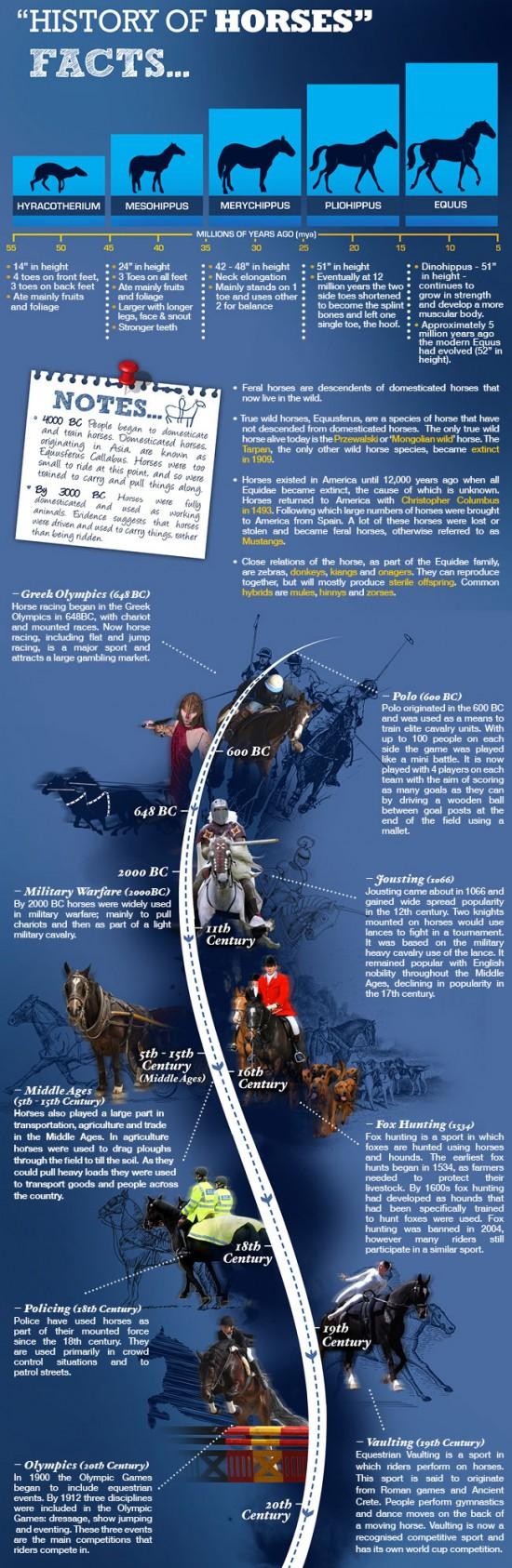 History of Horses